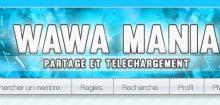 Wawa mania : tout savoir sur ce phénomène qui fait beaucoup d'adeptes